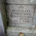 chryzantemy_niemiec07