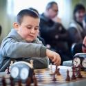 szachy22