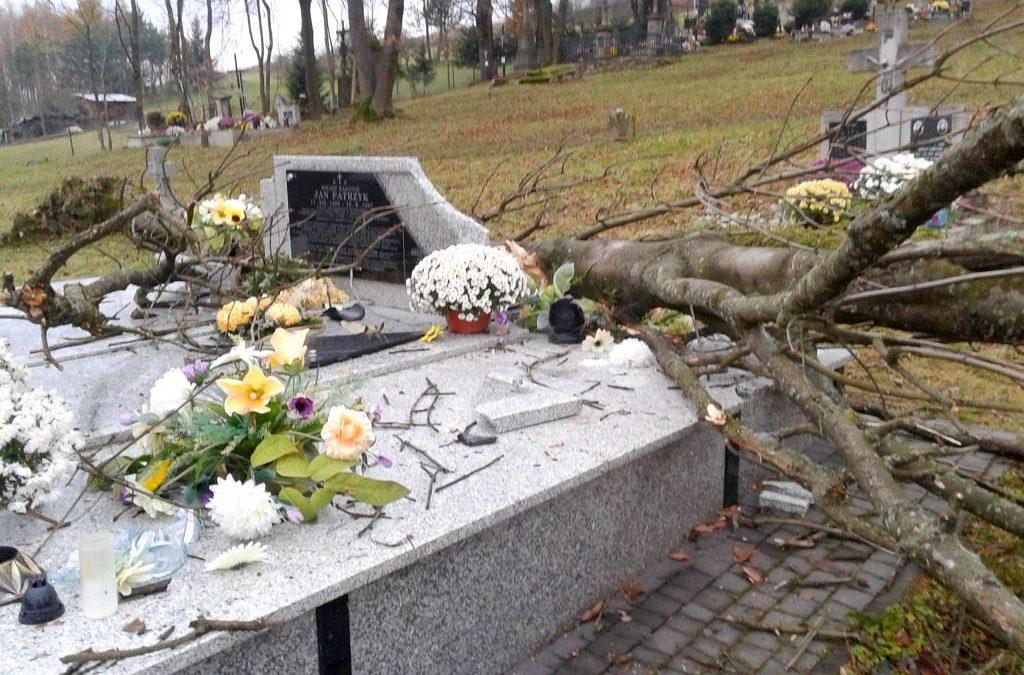 456 zł na sprzątanie starego cmentarza w Lipinkach
